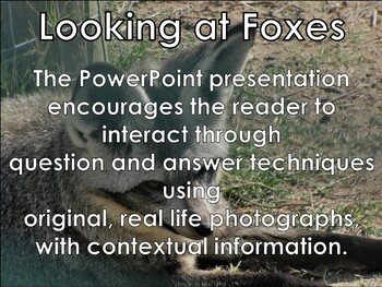 Foxes - Interactive PowerPoint presentation