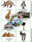 African Landmarks and Animals PDF