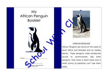 The African Penguin Booklet - Spot The Common & Proper Nouns