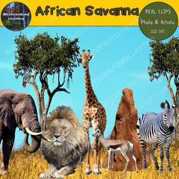 African Savanna Habitat Animals Clip Art Photo & Artistic ...