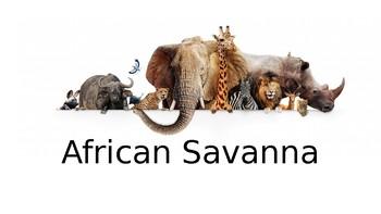African Savanna Presentation