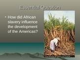 African Slave Trade: Powerpoint, Activity, Graphic Organizer, Summary