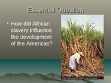 African Slave Trade: Powerpoint, Activity, Graphic Organizer, Summary
