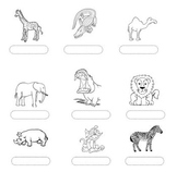 African animals french vocabulary - les animaux d'afrique