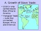 African in the Age of Transition (Slave Trade)