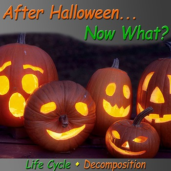 After Halloween... Now What?