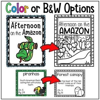 Afternoon on the Amazon Guided Reading Magic Tree House Unit