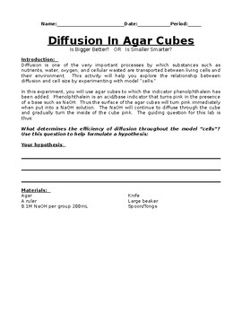 Agar Cube Lab (Cell Size and Diffusion)