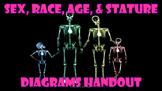 Age, Gender, Race, Stature Handout