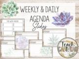 Agenda Google Slides  | Shiplap + Succulents