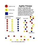Physical Education - Agility Fitness