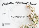 Agriculture Achievement Award - Prettiest Plot