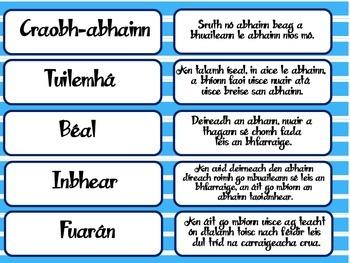 Aibhneacha - Cluiche Mheaitseála as Gaeilge // Rivers - Matching Game in Irish