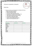 Aidiachtaí 2 - Irish Grammar Activities