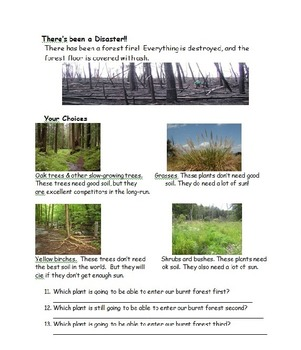 Aim: How do ecosystems change over time? (Ecological succession)