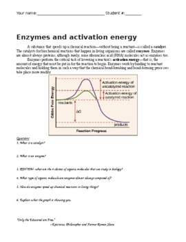 Aim: What is an enzyme?