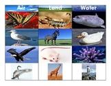 Air-Land-Water Animals:Montessori Three Part Cards Set 1