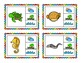 Preschool & Kindergarden Science: Air, Land, Water Cards