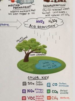 Air Pollution Graphic Foldable - AP Environmental Science