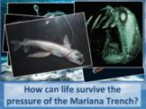 Air Pressure Water Bottle Demo- Useful in Teaching Mariana