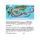 Air and Ocean Currents Notes (accompanies PowerPoint)