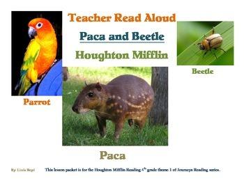 Akiak Houghton Mifflin Reading games, worksheets, and comprehension