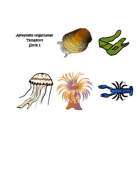 Akvatiske Organismer Temakort Serie 1
