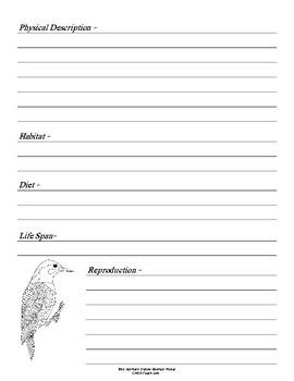 Alabama State Bird Notebooking Set (Northern Flicker)