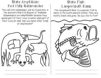 Alabama State Symbols Coloring Booklet