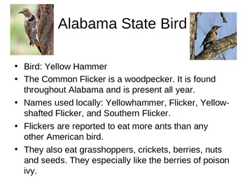 Alabama The State PowerPoint