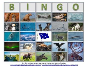 Alaska Bingo