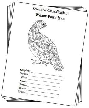 Alaska State Bird Notebooking Set (Willow Ptarmigan)