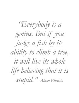 Albert Einstein, Everybody is a Genius