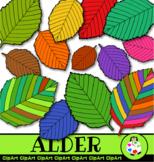 Alder Birch Leaf Doodle Clip Art