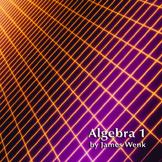 Algebra 1-Student Activity Book