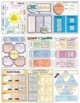 Algebra 2 FULL YEAR Doodle Notes 55+pgs GROWING BUNDLE! C/O Full Preview!