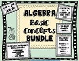 Algebra Basic Concepts BUNDLE - Terms, Examples, and Practice with Concepts