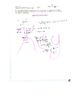 Algebra II 2 Polynomials Rational Functions Root Theorem,