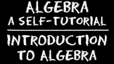 Algebra: Introduction to Algebra DVD