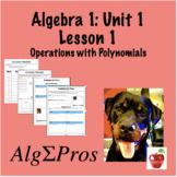 Algebra 1. Introduction to Polynomials