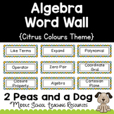 Algebra Math Word Wall Citrus Theme