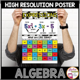 Algebra Poster: Algebraic Expressions and Identifying Like Terms