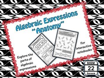 Algebraic Expressions {Identifying Parts of Algebraic Expressions}