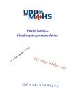 Algebraic Factorisation