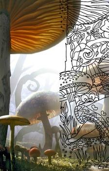 Alice in Wonderland Enchanted Time