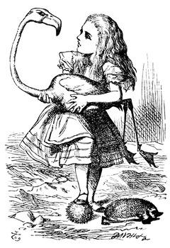 Alice's Adventures in Wonderland Assessment