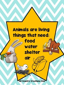 Alive or Not?  Identify the Living and Nonliving with Common Basic Needs