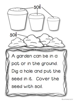 All About A Garden a non fiction book for beginning readers