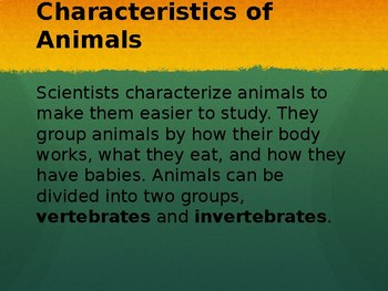 All About Animal Characteristics