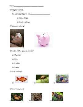 All About Animal test/quiz/assessment